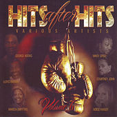 Hits After Hits Vol. 6 by Various Artists