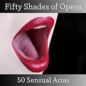 Fifty Shades of Opera - 50 Sensual Arias von Various Artists