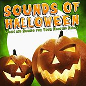 Sounds of Halloween - Music and Sounds for Your Haunted House Party by Various Artists