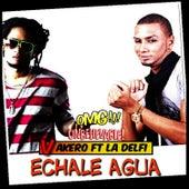 Play & Download Echale Agua - Remix by La Delfi | Napster