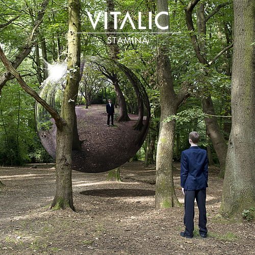 Play & Download Stamina by Vitalic | Napster