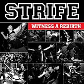 Play & Download Witness a Rebirth by Strife | Napster