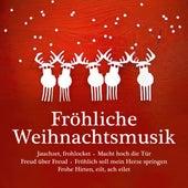 Fröhliche Weihnachtsmusik - Jauchzet, frohlocket - Macht hoch die Tür - Freud über Freud - Fröhlich soll mein Herze springen - Frohe Hirten, eilt, ach eilet von Various Artists