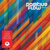 Flow Lines by Positive Flow