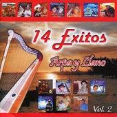 Arpa y Llano, Vol. 2 de Various Artists