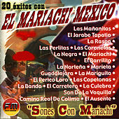 Play & Download 20 Éxitos con El Mariachi Mexico - Sones Con Mariachi by Mariachi Mexico | Napster