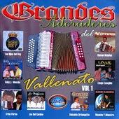 Play & Download Grandes Adoradores del Vallenato, Vol. 1 by Various Artists | Napster