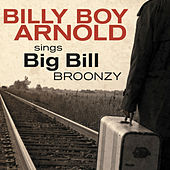 Play & Download Billy Boy Arnold Sings: Big Bill Broonzy by Billy Boy Arnold | Napster