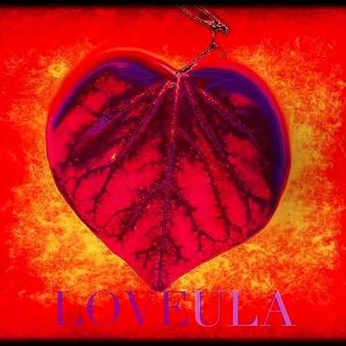 Play & Download Loveula by Love | Napster