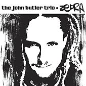 Zebra by The John Butler Trio