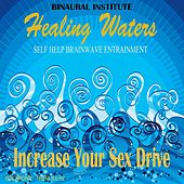 Play & Download Increase Your Sex Drive: Brainwave Entrainment (Healing Waters Embedded With 6.6hz Theta Isochronic Tones) by Binaural Institute | Napster