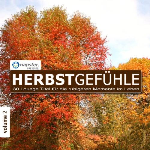 Napster pres. Herbstgefühle 2 - 30 Lounge Titel für die ruhigeren Momente im Leben by Various Artists