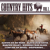 Country Hits Vol.1 von Various Artists
