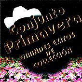 Play & Download Grandes Exitos De Coleccion by Conjunto Primavera | Napster