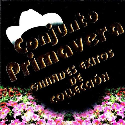 Play & Download Grandes Exitos De Coleccion by Conjunto Primavera | Napster