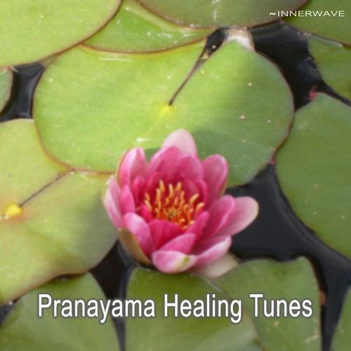 Play & Download Pranayama Healing Tunes by Various Artists | Napster
