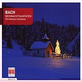 Bach: Chistmas Cantatas von Various Artists