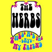 Play & Download These Are the Days My Friend by Herbs | Napster
