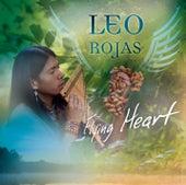 Flying Heart von Leo Rojas