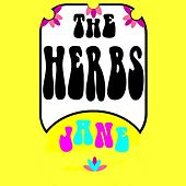 Play & Download Jane by Herbs | Napster