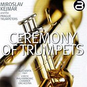 Ceremony of Trumpets by Miroslav Kejmar