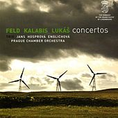 Play & Download Feld / Lukas: Concertos by Various Artists | Napster