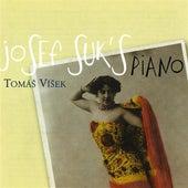 Suk: Piano Music by Tomas Visek
