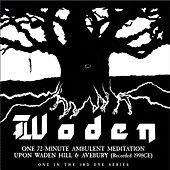 Play & Download Woden by Julian Cope | Napster