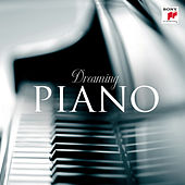 Dreaming Piano von Various Artists