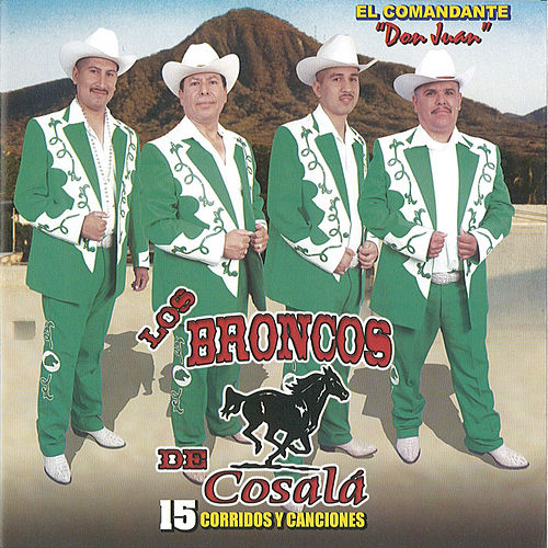 Play & Download 15 Corridos Y Canciones by Los Broncos De Cosala | Napster