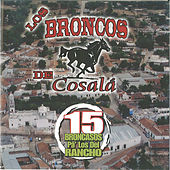 Play & Download 15 Broncasos Pa Los Del Rancho by Los Broncos De Cosala | Napster