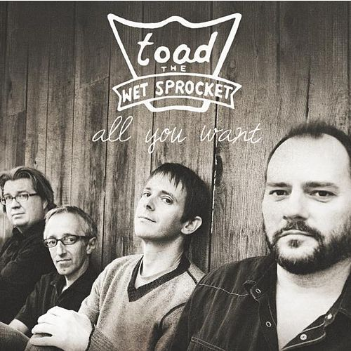 Play & Download All You Want by Toad the Wet Sprocket | Napster