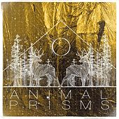 Play & Download Animal Prisms by Pop Pistol | Napster