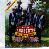 Play & Download Puros Corridos by Los Rancheritos Del Topo Chico | Napster