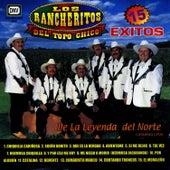 Play & Download 15 Exitos by Los Rancheritos Del Topo Chico | Napster