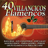 Villancicos Flamencos by Various Artists