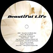 Play & Download Beautiful Life - EP by Various Artists | Napster