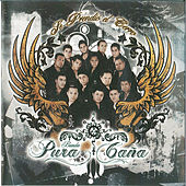Play & Download Se Prendio El Cerro by Banda Pura Cana | Napster