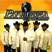 Play & Download Sueño Divino by Pantera Del Norte | Napster