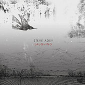 Play & Download Laughing - Single by Steve Adey | Napster
