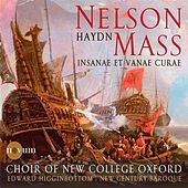 Play & Download Haydn: Nelson Mass - Insanae et vanae curae by Various Artists | Napster