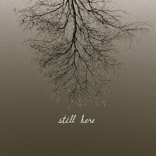 Still Here by John Mark Nelson