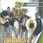 Play & Download 30 Corridos by Los Parranderos De Medianoche | Napster