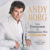 Play & Download Meine Evergreens und unvergessenen Hits - CD2 by Andy Borg | Napster