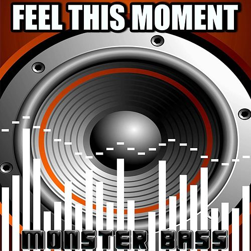 Feel The Moment - Tribute to Christina Aguilera and Pitbull by Monster Bass