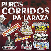 Puros Corridos Pa'laraza by Various Artists