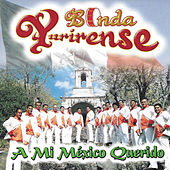 Play & Download A Mi Mexico Querido by Banda Yurirense | Napster