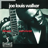Play & Download Blues Survivor by Joe Louis Walker | Napster