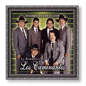 Play & Download Tesoros de Coleccion: Lo Romantico de los Caminantes by Los Caminantes | Napster