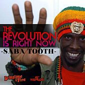 Play & Download The Revolution Is Right Now! by Various Artists | Napster